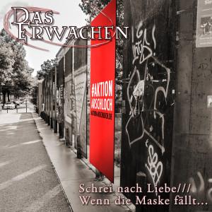 Cover - Schrei nach Liebe /// Wenn die Maske fällt...